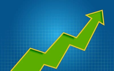 Identify Market Trends You Can Capitalize On